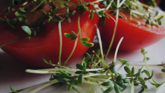 Eathing Healthy on a Budget Fresh Food